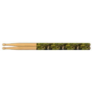 Dominica Drumsticks