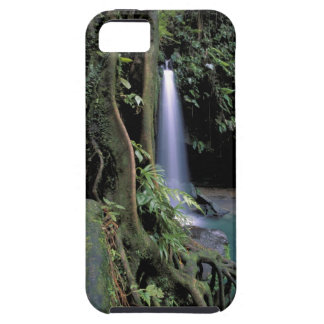 Dominica, Emerald Pool, Waterfall. iPhone SE/5/5s Case