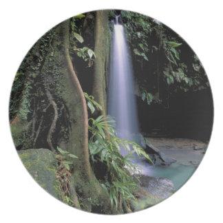 Dominica, Emerald Pool, Waterfall. Melamine Plate