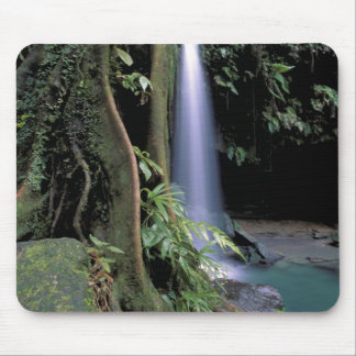 Dominica, Emerald Pool, Waterfall. Mouse Pad