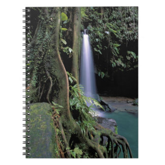 Dominica, Emerald Pool, Waterfall. Spiral Note Books