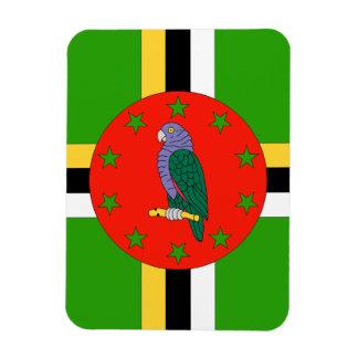Dominica Imanes Rectangulares