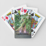 Dominica Island Deck Of Cards