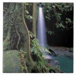 Dominica, piscina esmeralda, cascada azulejo cuadrado grande