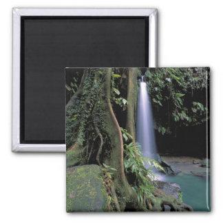 Dominica, piscina esmeralda, cascada imán cuadrado