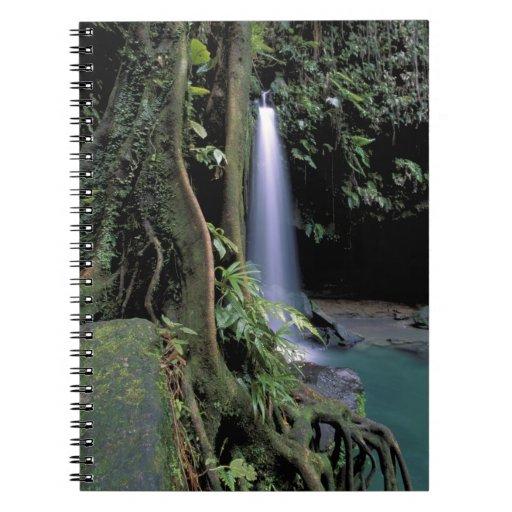 Dominica, piscina esmeralda, cascada libreta espiral