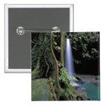 Dominica, piscina esmeralda, cascada pins