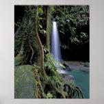 Dominica, piscina esmeralda, cascada posters