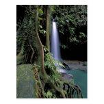 Dominica, piscina esmeralda, cascada tarjetas postales