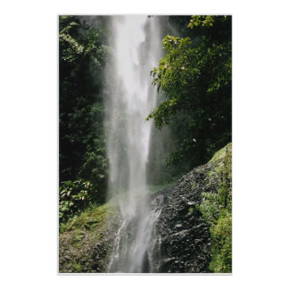 Dominica Waterfall Poster