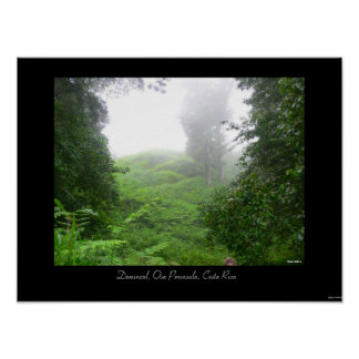 Dominical, Osa Peninsula, Costa Rica Poster