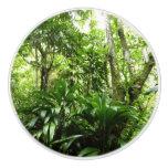 Dominican Rain Forest I Tropical Green Nature Ceramic Knob