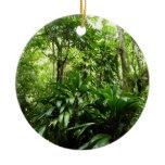 Dominican Rain Forest I Tropical Green Nature Ceramic Ornament