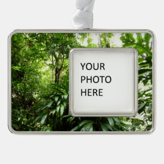 Dominican Rain Forest I Tropical Green Nature Christmas Ornament