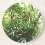 Dominican Rain Forest I Tropical Green Nature Coaster