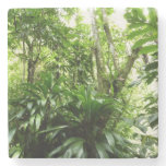 Dominican Rain Forest I Tropical Green Nature Stone Coaster