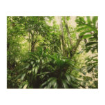 Dominican Rain Forest I Tropical Green Nature Wood Wall Art