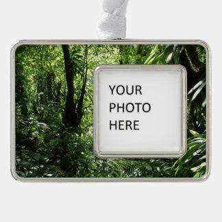 Dominican Rain Forest II Tropical Green Christmas Ornament