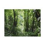 Dominican Rain Forest II Tropical Green Doormat