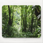 Dominican Rain Forest II Tropical Green Mouse Pad
