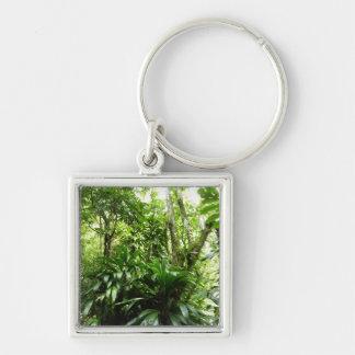Dominican Rain Forest Keychain