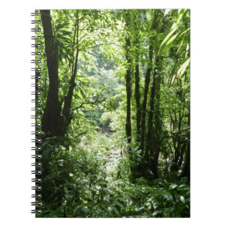 Dominican Rain Forest Notebook