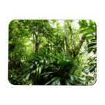 Dominican Rain Forest Premium Magnet