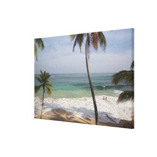Dominican Republic, North Coast, Abreu, Playa 3 Canvas Prints
