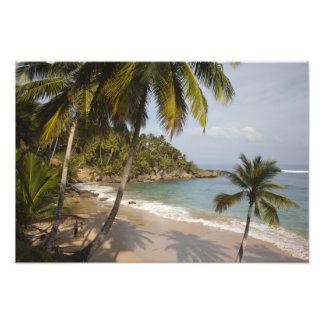 Dominican Republic, North Coast, Abreu, Playa 3 Photo Print