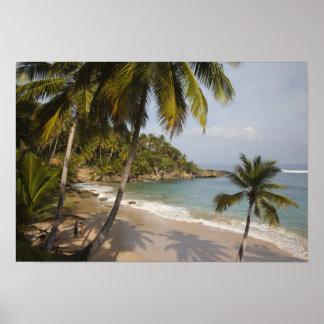 Dominican Republic, North Coast, Abreu, Playa 3 Poster