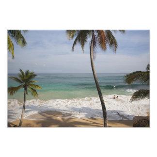 Dominican Republic, North Coast, Abreu, Playa 4 Photograph