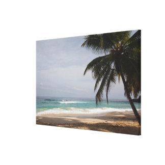 Dominican Republic, North Coast, Abreu, Playa Canvas Print