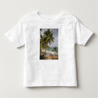 Dominican Republic, North Coast, Abreu, Playa Toddler T-shirt