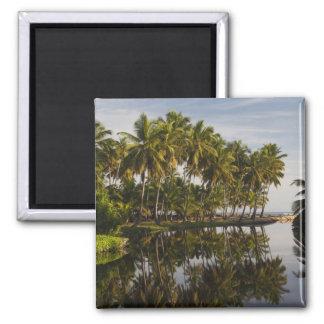Dominican Republic, North Coast, Nagua, Playa Magnet