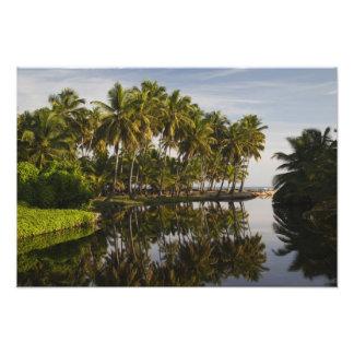 Dominican Republic, North Coast, Nagua, Playa Photo Art