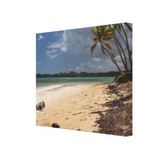 Dominican Republic Playa Bonita Beach Canvas Print