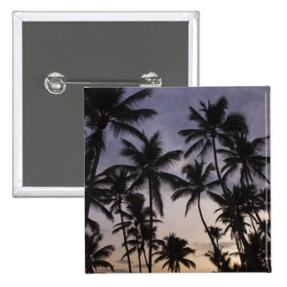 Dominican Republic, Samana Peninsula, Las 2 Pinback Buttons