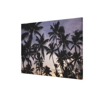 Dominican Republic, Samana Peninsula, Las 2 Gallery Wrap Canvas