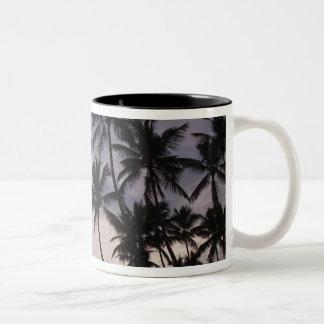 Dominican Republic, Samana Peninsula, Las 2 Coffee Mug