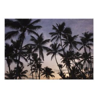 Dominican Republic, Samana Peninsula, Las 2 Photographic Print