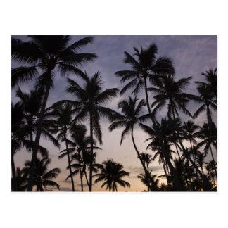 Dominican Republic, Samana Peninsula, Las 2 Postcard