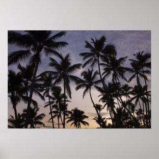 Dominican Republic, Samana Peninsula, Las 2 Print