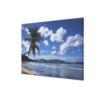 Dominican Republic, Samana Peninsula, Las 4 Gallery Wrap Canvas
