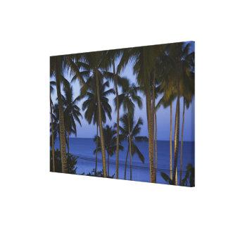 Dominican Republic, Samana Peninsula, Las Canvas Print