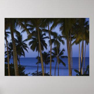Dominican Republic, Samana Peninsula, Las Poster