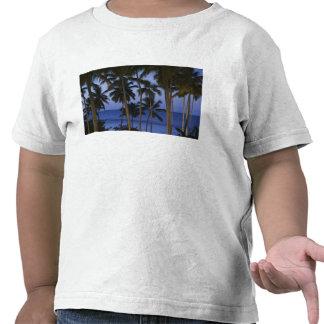 Dominican Republic, Samana Peninsula, Las T Shirt