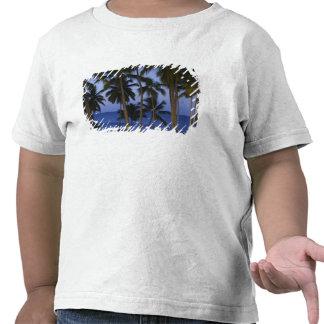 Dominican Republic, Samana Peninsula, Las T Shirts