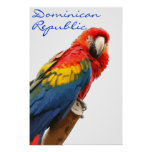 Dominican Republic Scarlet Macaw Poster