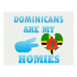 Dominicans are my Homies Postcards