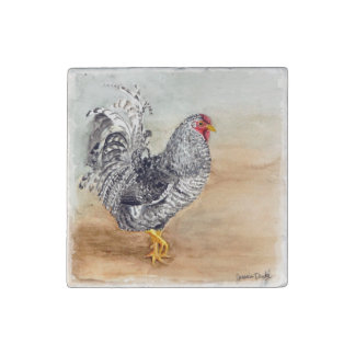 Dominique Chicken Rooster Watercolor Artwork Stone Magnet